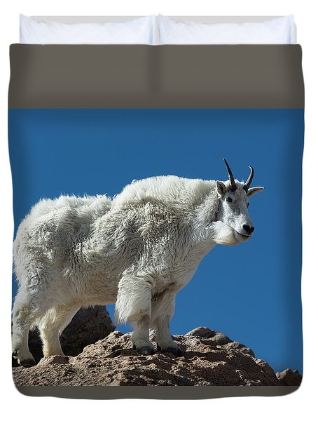 Duvet Cover featuring the photograph Mountain Goat 2 by Gary Lengyel