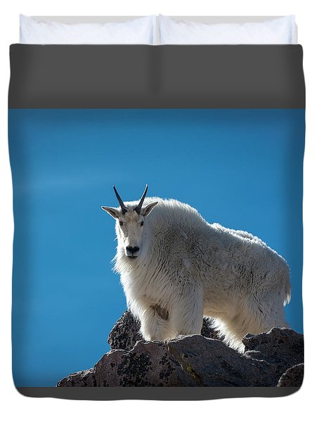 Duvet Cover featuring the photograph Mountain Goat 3 by Gary Lengyel