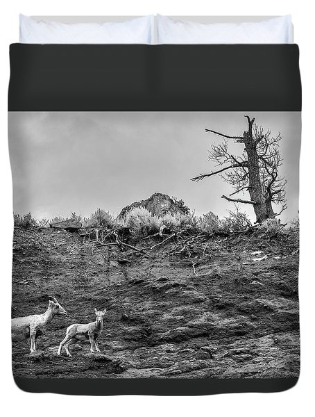 Mountain Goat With A Kid For A Walk Duvet Cover