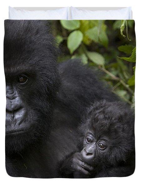 Mountain Gorilla Mother Holding 3 Month Duvet Cover by Suzi Eszterhas
