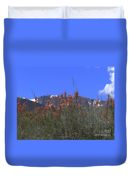 Mountain Gradure Duvet Cover