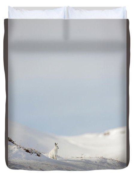 Mountain Hare On Hillside Duvet Cover