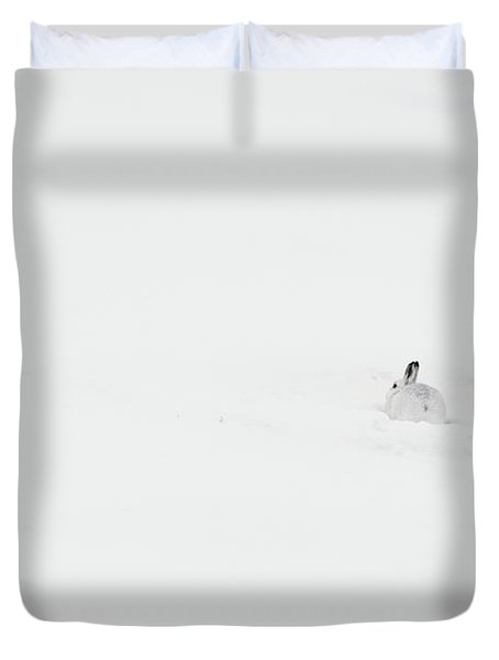 Mountain Hare Small In Frame Right Duvet Cover