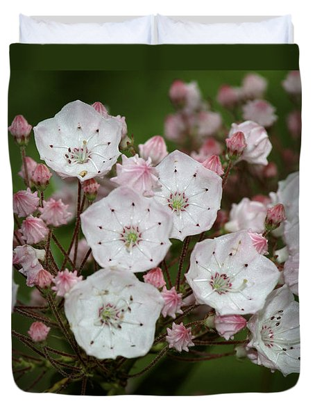 Mountain Laurel I Duvet Cover