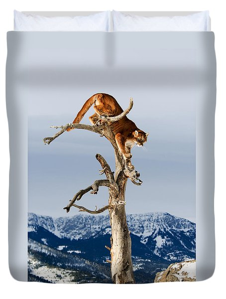 Mountain Lion In Tree Duvet Cover