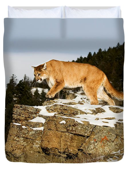 Mountain Lion On Rocks Duvet Cover