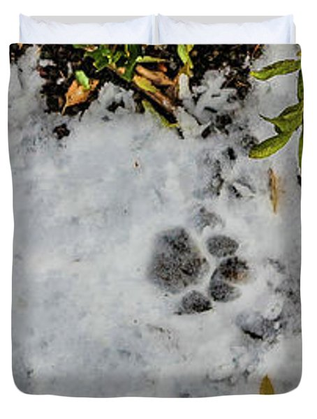 Mountain Lion Tracks In Snow Duvet Cover