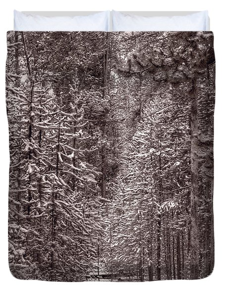 Mountain Trail Yellowstone Bw Duvet Cover by Steve Gadomski