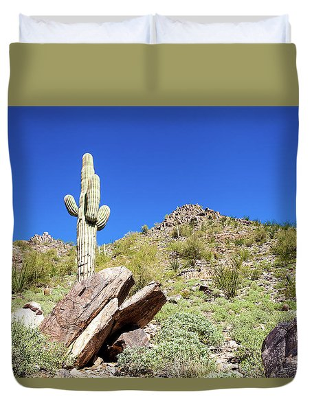 Mountainside Cactus 2 Duvet Cover by Ed Cilley