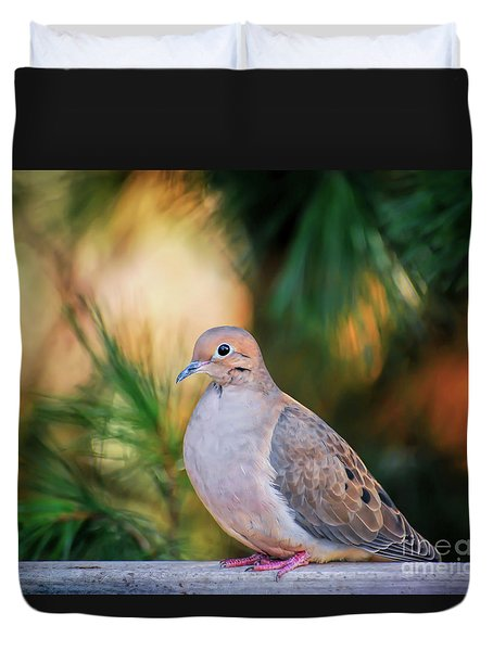 Duvet Cover featuring the photograph Mourning Dove Bathed In Autumn Light by Kerri Farley of New River Nature