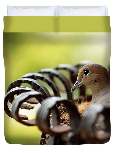 Duvet Cover featuring the photograph Mourning Dove In A Flower Planter by Debbie Oppermann