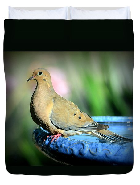 Mourning Dove Perched Duvet Cover by Josephine Buschman