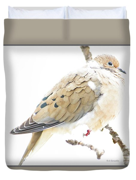 Mourning Dove, Snowy Morning Duvet Cover
