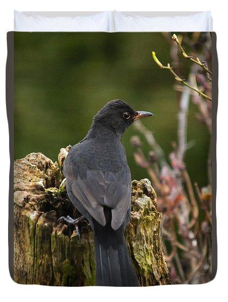 Mr Birdy Duvet Cover