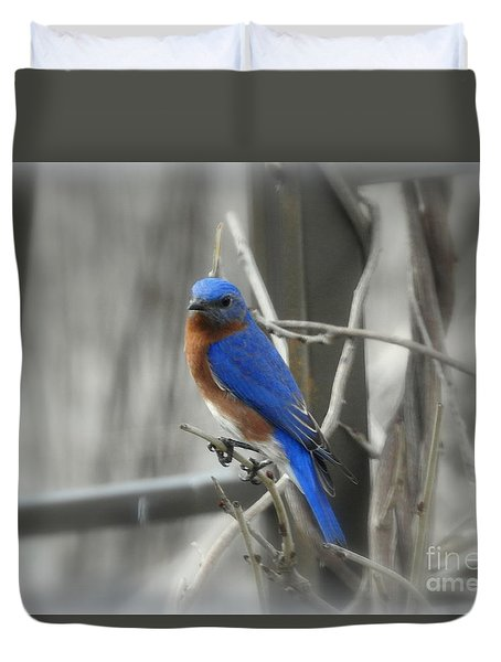 Mr. Bluebird Duvet Cover by Brenda Bostic
