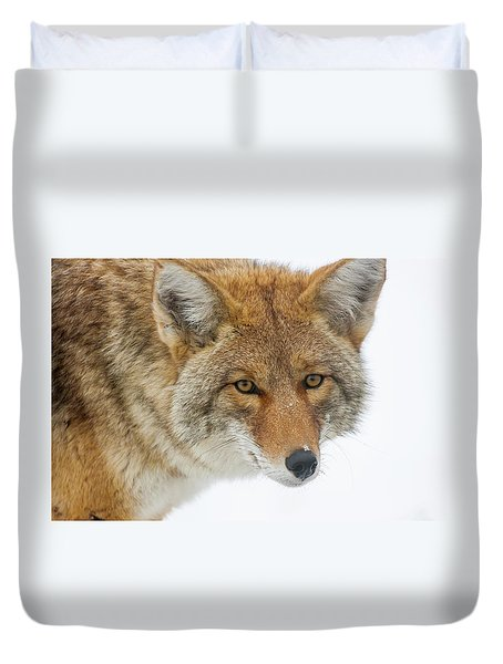 Mr. Coyote Duvet Cover