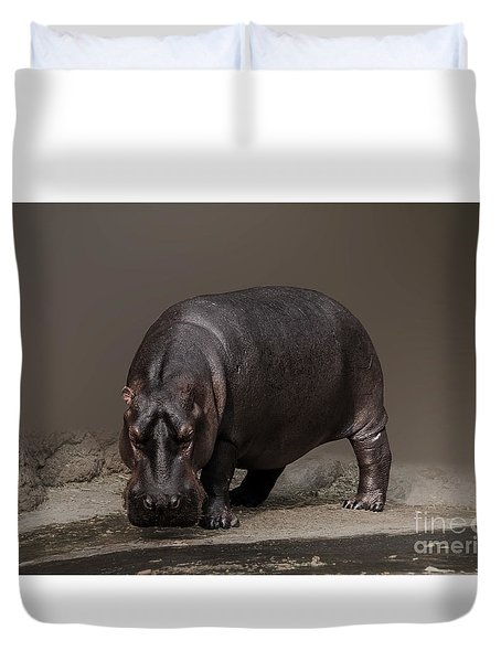 Mr. Hippo Duvet Cover by Charuhas Images