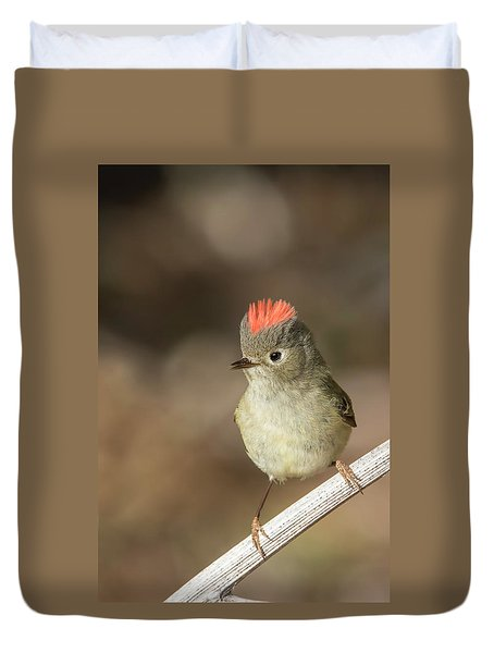 Duvet Cover featuring the photograph Mr Kinglet  by Mircea Costina Photography