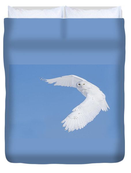 Mr Snowy Owl Duvet Cover