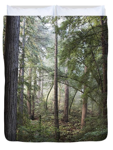 Duvet Cover featuring the photograph Muir Woods Tranquility by Sandra Bronstein