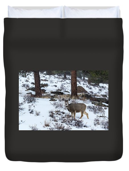 Mule Deer - 8922 Duvet Cover