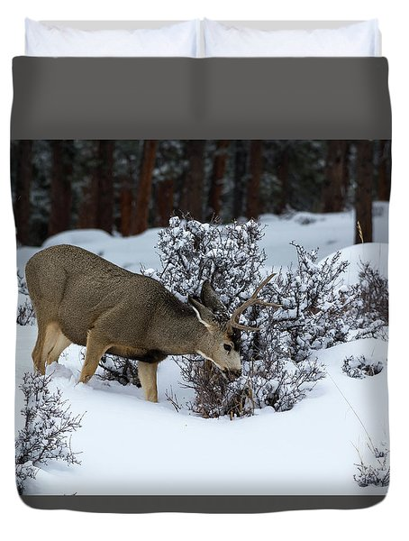 Mule Deer - 9130 Duvet Cover