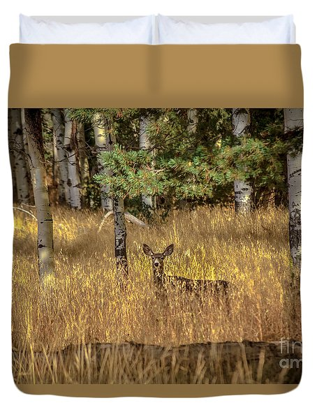 Mule Deer In The Aspens Duvet Cover