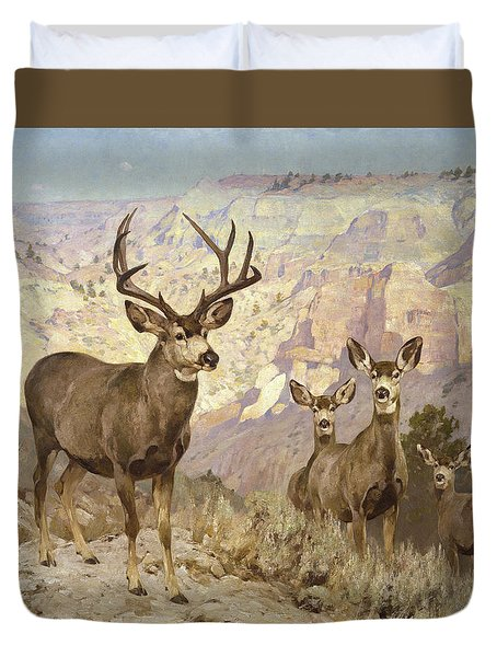Mule Deer In The Badlands, Dawson County, Montana Duvet Cover