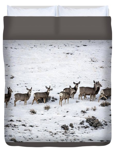 Muledeer Gather On A Snowy Hillside In Sweetwater County In Wyoming Duvet Cover by Carol M Highsmith