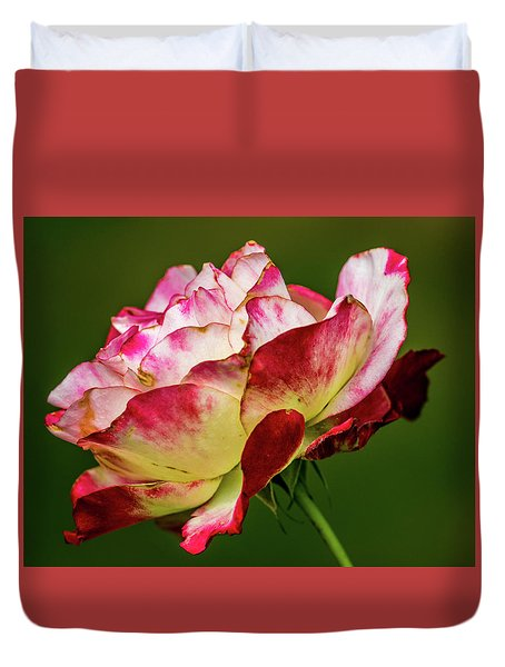 Multi-colored Rose Duvet Cover