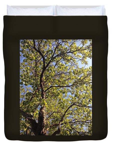 Duvet Cover featuring the photograph Multiplicity  by Nora Boghossian