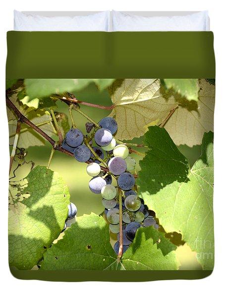 Muscadine Grapes Duvet Cover