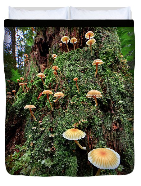 Mushroom Colony Duvet Cover