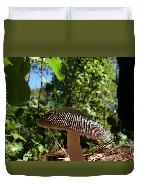 Duvet Cover featuring the photograph Mushroom by Matthew Bamberg
