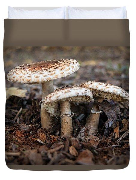 Duvet Cover featuring the photograph Mushroom Trio Macrolepiota Procera by Frank Wilson