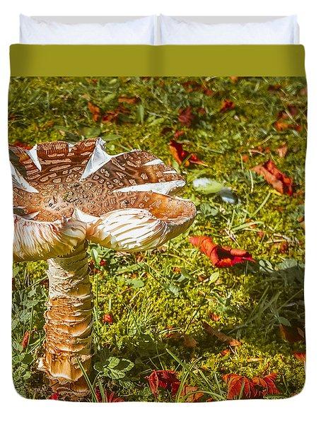 Mushroom Upclose Duvet Cover
