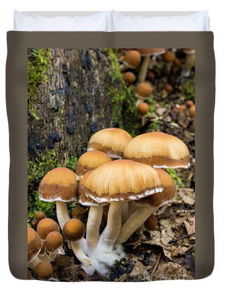 Duvet Cover featuring the photograph Mushrooms - D009959 by Daniel Dempster