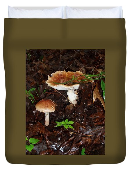Mushrooms Rising Duvet Cover