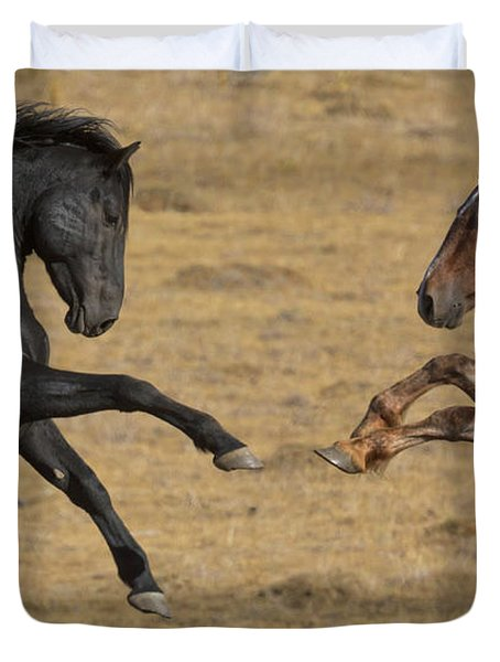 Mustang Stallions Playing Duvet Cover