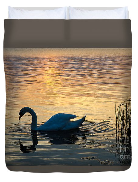 Mute Swan At Sunset Duvet Cover