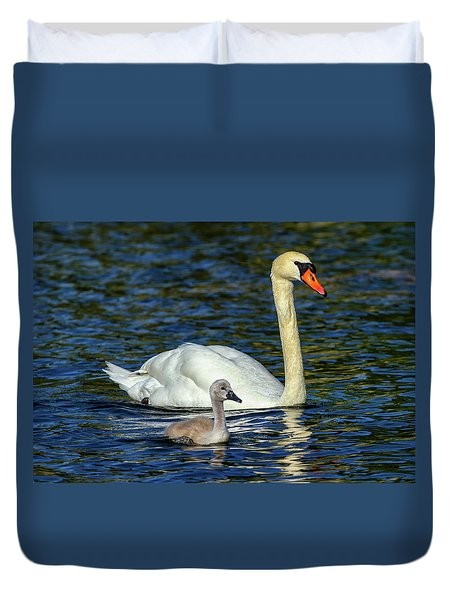Mute Swan, Cygnus Olor, Mother And Baby Duvet Cover