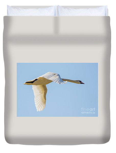 Mute Swan Duvet Cover by Jivko Nakev