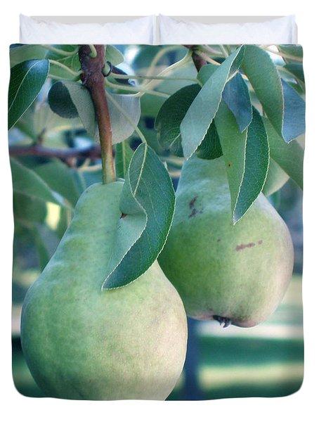 My Brothers Pear Tree Duvet Cover by Wayne Potrafka