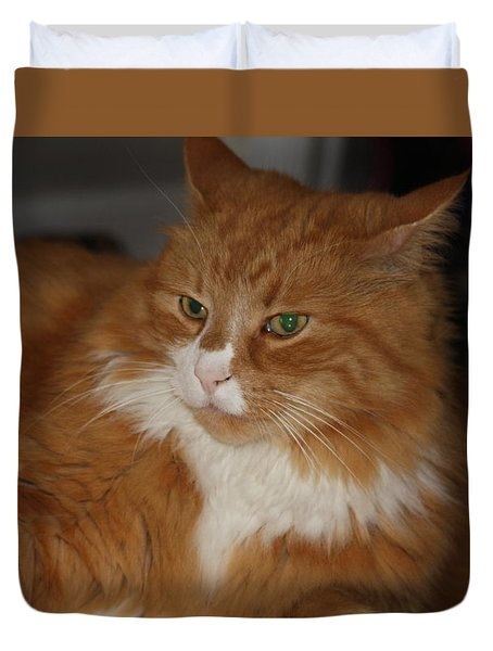 Mysterious Cat Duvet Cover