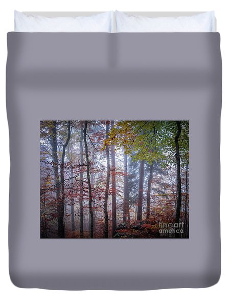 Duvet Cover featuring the photograph Mystery In Fog by Elena Elisseeva