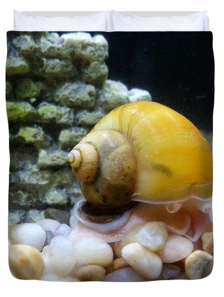 Mystery Snail Duvet Cover