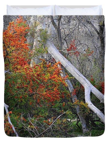 Mystical Woodland Duvet Cover