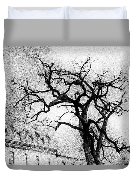 Naked Tree Duvet Cover by Celso Bressan