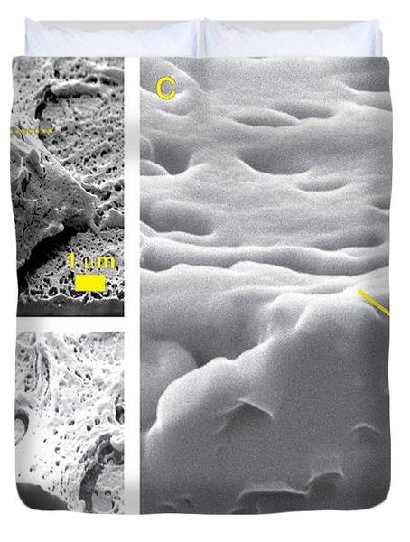 Nanoparticles, Neural Cell, Shim Duvet Cover
