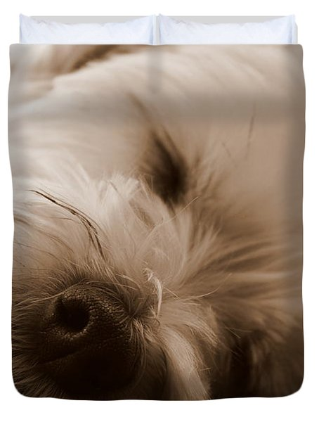 Nap Time Duvet Cover by Ed Smith